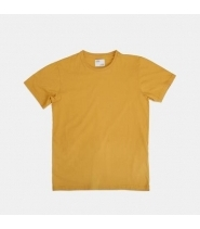 CLASSIC ORGANIC TEE - BURNED YELLOW